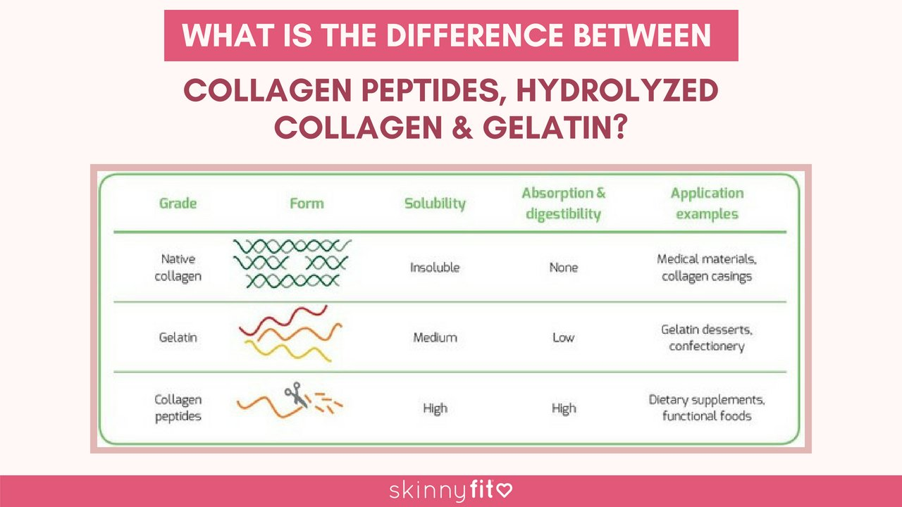 what is the difference between collagen peptides, hydrolyzed collagen, and gelatin?