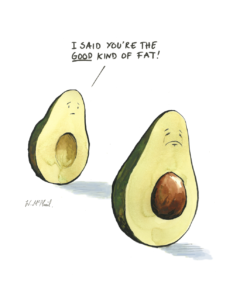 "Cartoon of one avocado pleading to the other ""I said you're the good kind of fat!"" by Will McPhail"