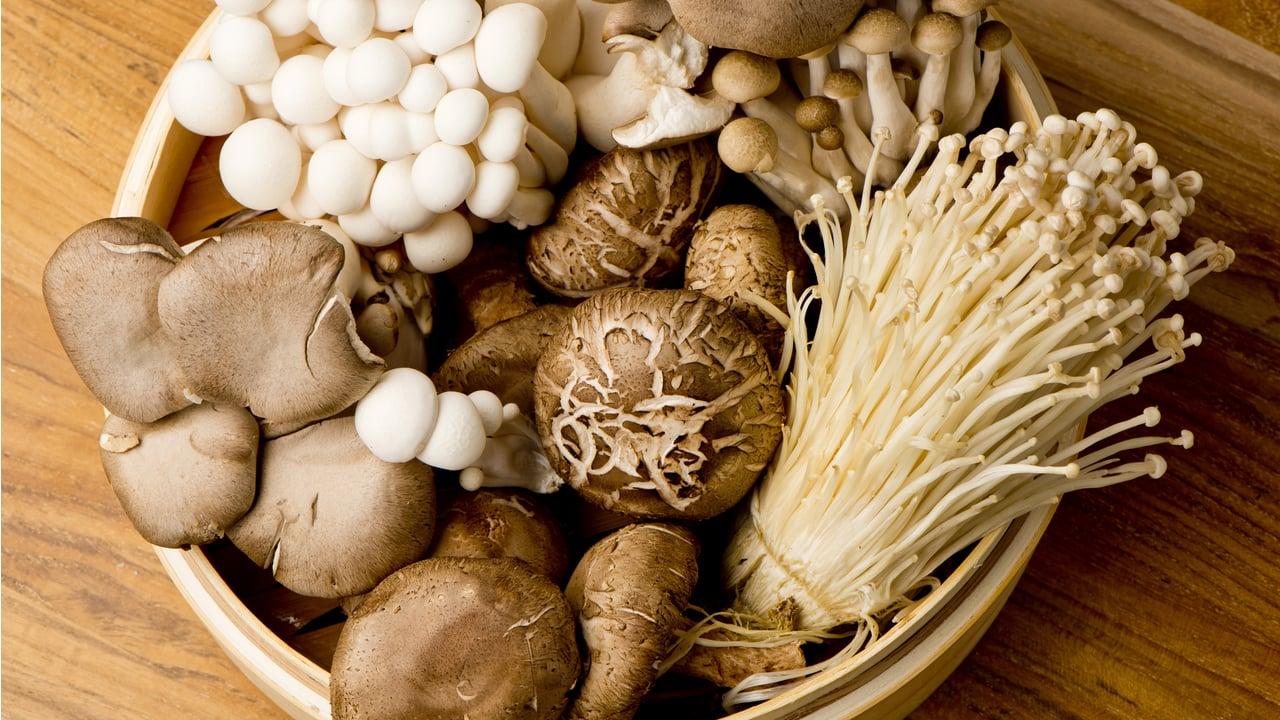 weird mushrooms